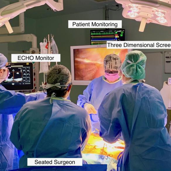 7 Habits of endoscopic mitral surgeons